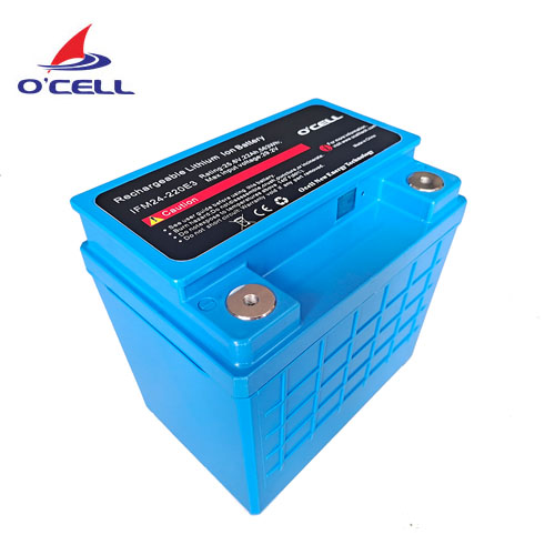 IFM24-220E2 24V22Ah Battery